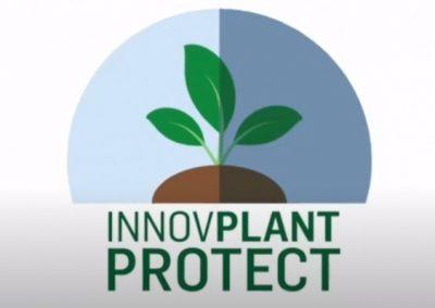 InnovPlantProtect – Associação (CoLAB)